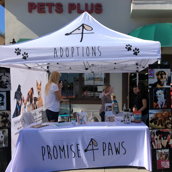 Adoption Event – PETS PLUS –  San Juan Capistrano  –  Saturday February 16th 10-1pm