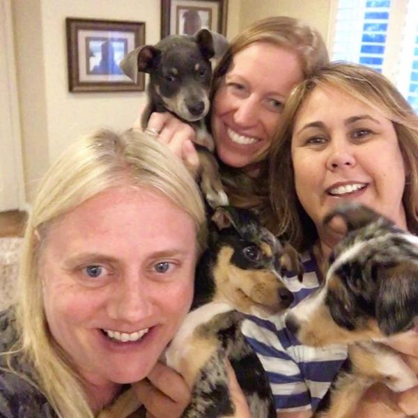 Jewel Pups Reunion